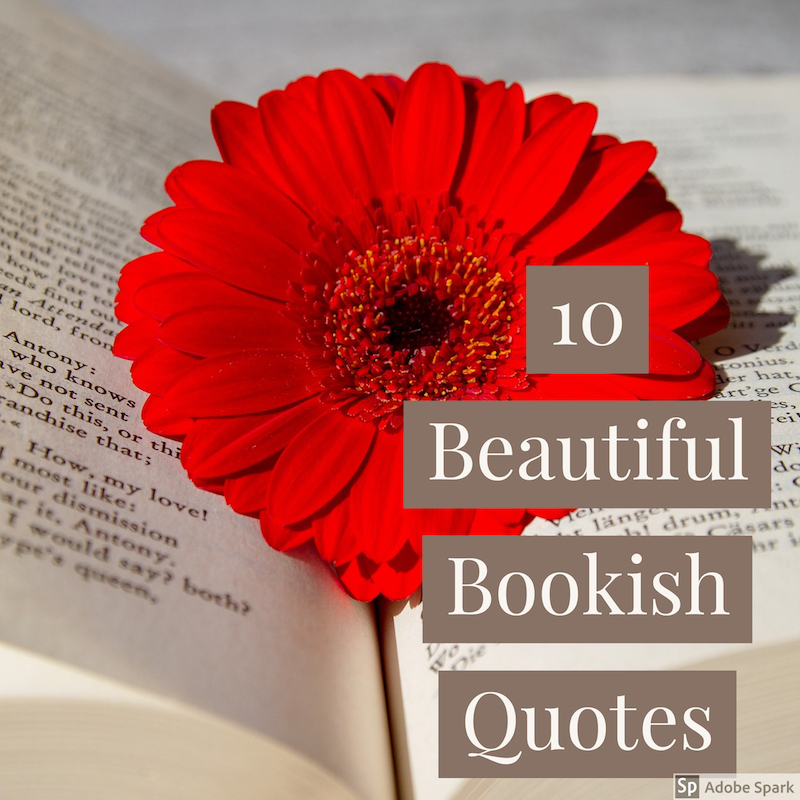 beautiful bookish quotes